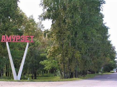 Власти потратят 12 млрд рублей на развитие приграничных территорий ЕАО