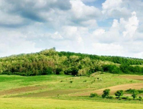 Получать «дальневосточный гектар» можно будет через МФЦ