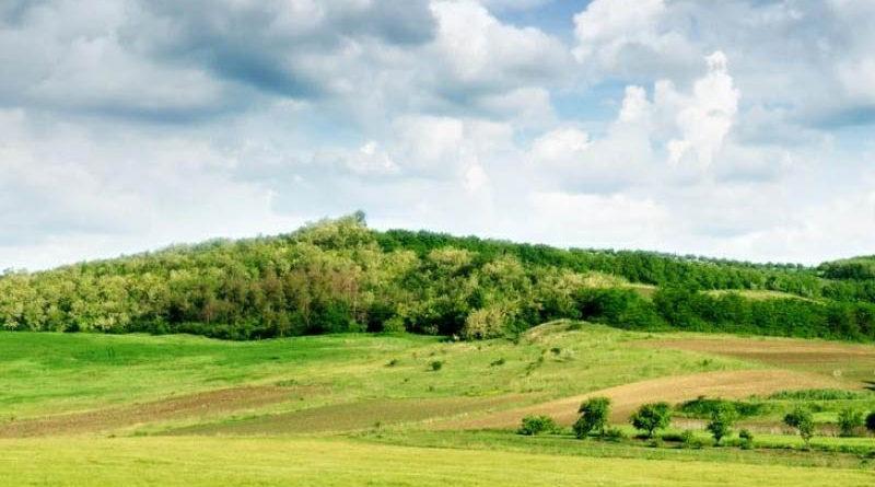 На Дальнем Востоке более 2,5 млн га бесхозных земель подготовили для инвесторов