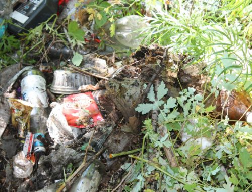 Осенью возле Биробиджана начнут массово складировать «отходы цивилизации»