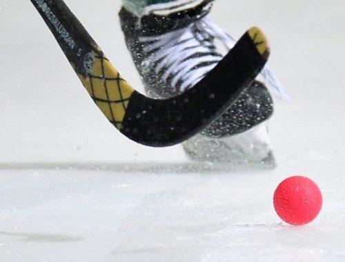 Биробиджанская «Надежда» не будет участвовать во всероссийских соревнованиях