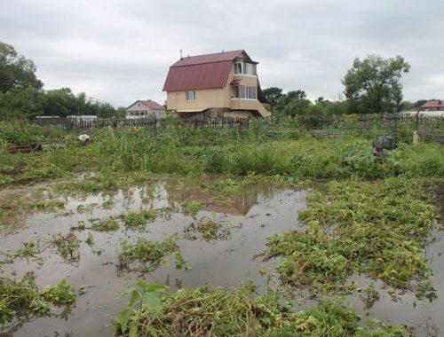 Окрестности биробиджанского микрорайона Дальсельмаш превратились в болото