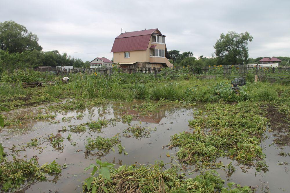 Биробиджан продолжает тонуть: количество затопленных домов возросло до 117