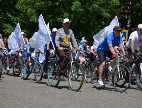 Активисты ОНФ организуют в Биробиджане велопарад в День физкультурника