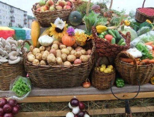Рост сельского хозяйства в России на 30% оказался статистической ошибкой