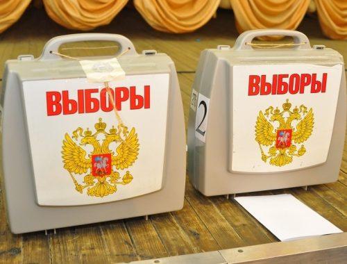 В ЕАО открылись избирательные участки для голосования на муниципальных выборах