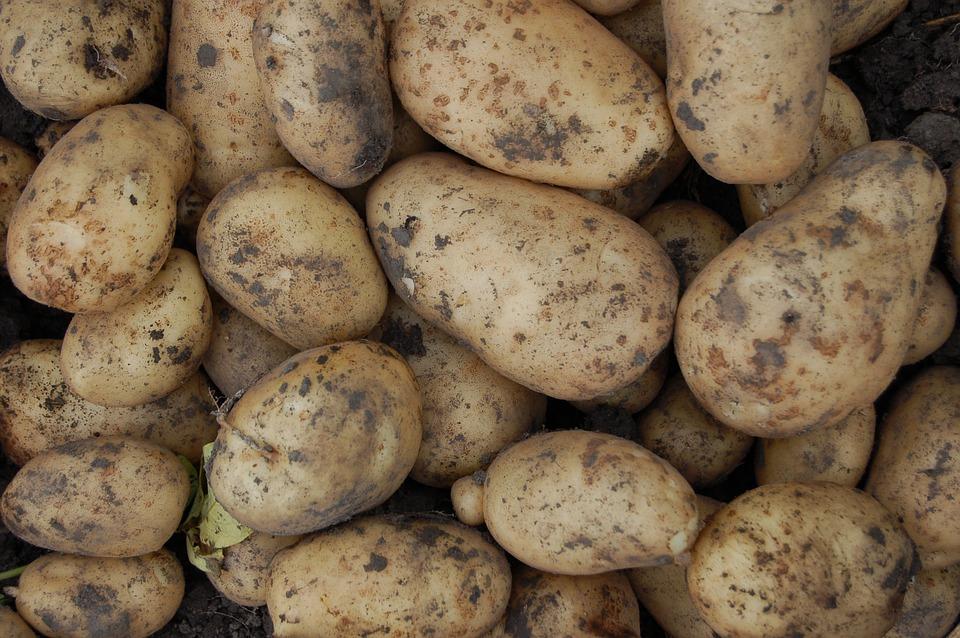 Жителей ЕАО могут оштрафовать за продажу картошки со своего огорода