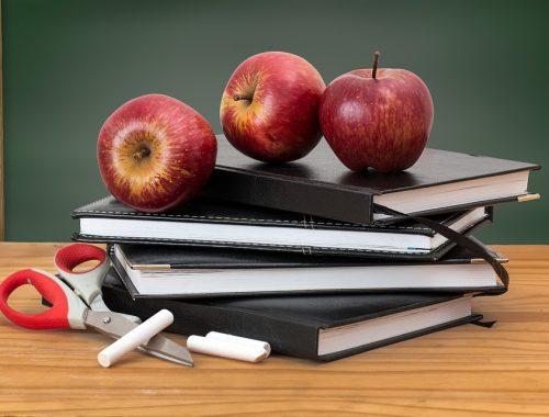 Жители Дальнего Востока в среднем тратят более 3 тысяч рублей в месяц на школьные услуги