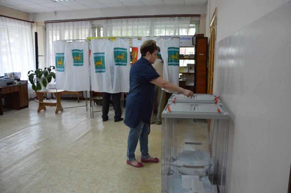 В ЕАО началось голосование на муниципальных выборах