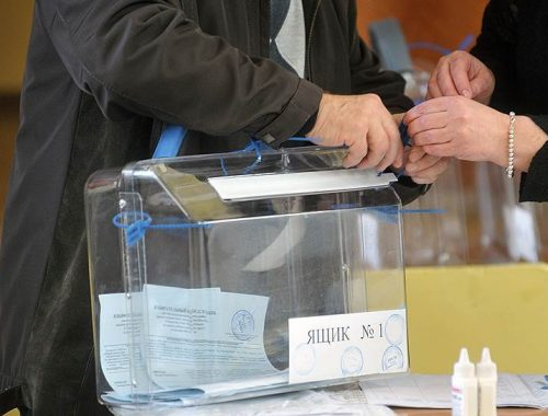 Более сотни избирателей проголосовали в ЕАО досрочно на президентских выборах