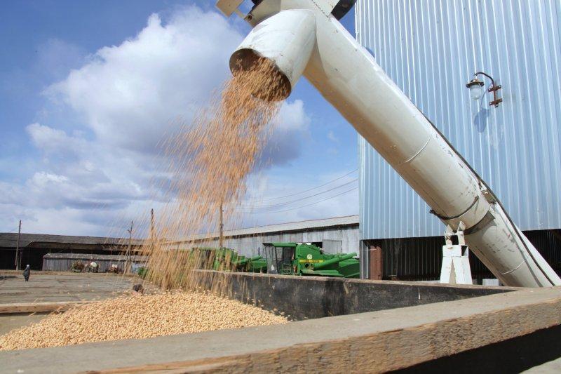 Надежды фермеров ЕАО на ледовую переправу не оправдались: цена на сою остаётся низкой