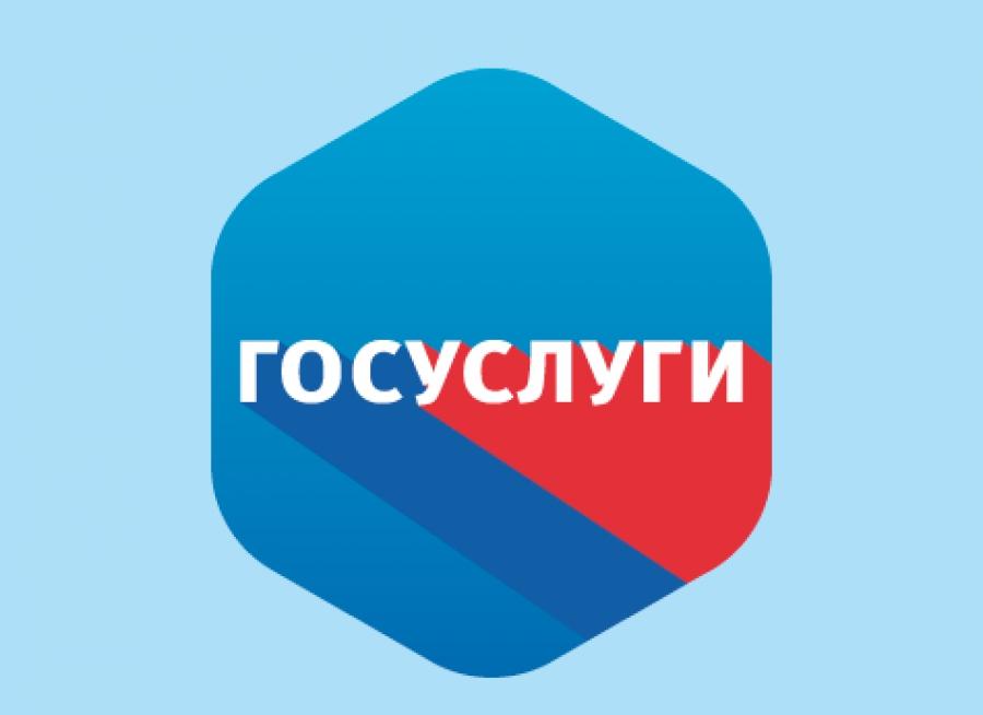 ЕАО заняла 60 место в рейтинге качества оказания госуслуг