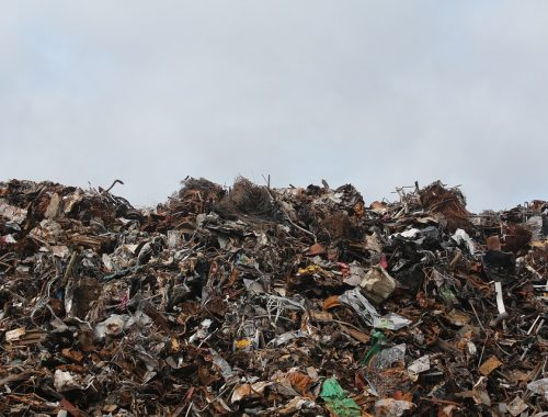 Мусорная реформа терпит фиаско: площади Греции достигли горы отходов в России