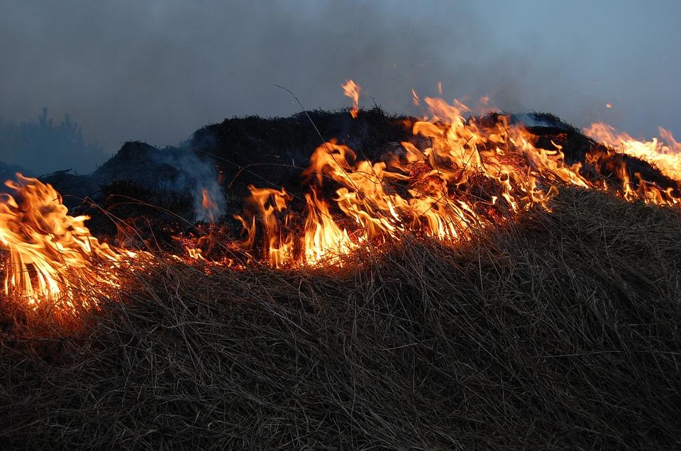 Прокуратура продолжает штрафовать глав поселений Смидовичского района за нарушение пожарной безопасности