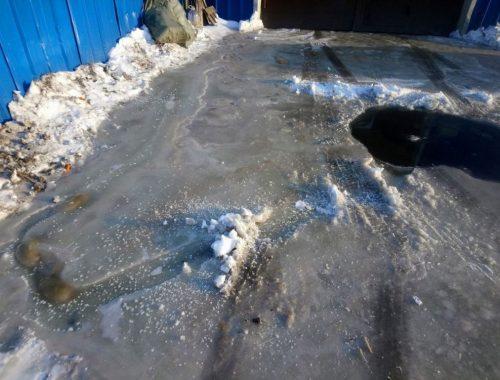 Фекальная лужа разлилась во дворе биробиджанского спорткомплекса