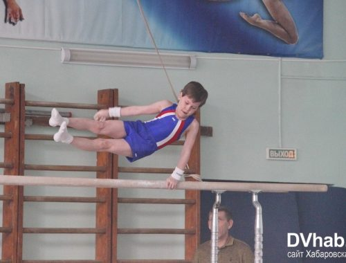 Турнир в Биробиджане собрал около сорока дальневосточных гимнастов