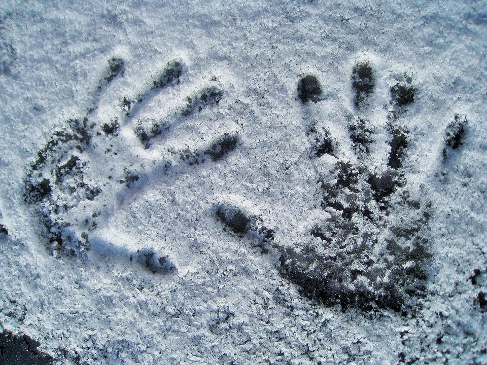28 пар кистей отрубленных человеческих рук нашли в Амуре возле Хабаровска