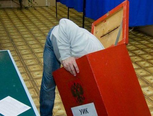 На праймериз единороссов в Биробиджане пришло менее 4% избирателей