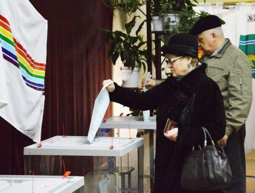 Довыборы в Заксобрание ЕАО стартовали в биробиджанском одномандатном округе №2