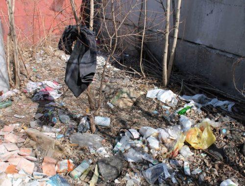Биробиджанскую управляющую компанию «наказали рублем» за несанкционированные свалки