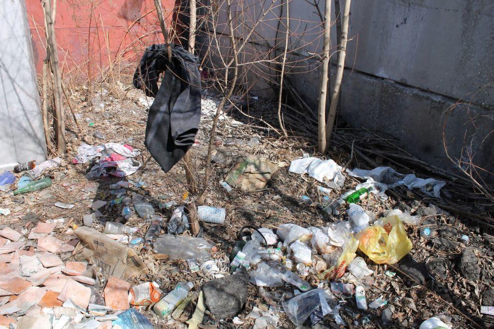 Уборку свалок в центре Биробиджана взяли на контроль активисты ОНФ