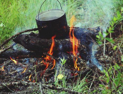 В ЕАО введен особый противопожарный режим