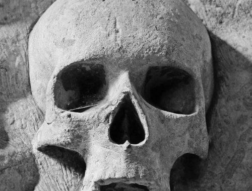 Человеческую голову и конечность обнаружили в подвале биробиджанского общежития