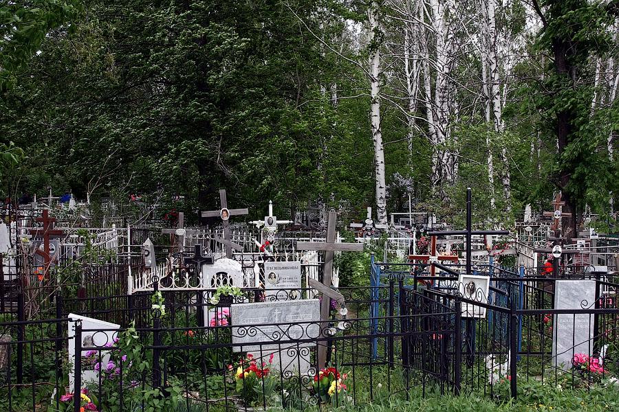 Михаил Бочаров: За годы «реформ» Россия дополнительно потеряла более 28 млн человек