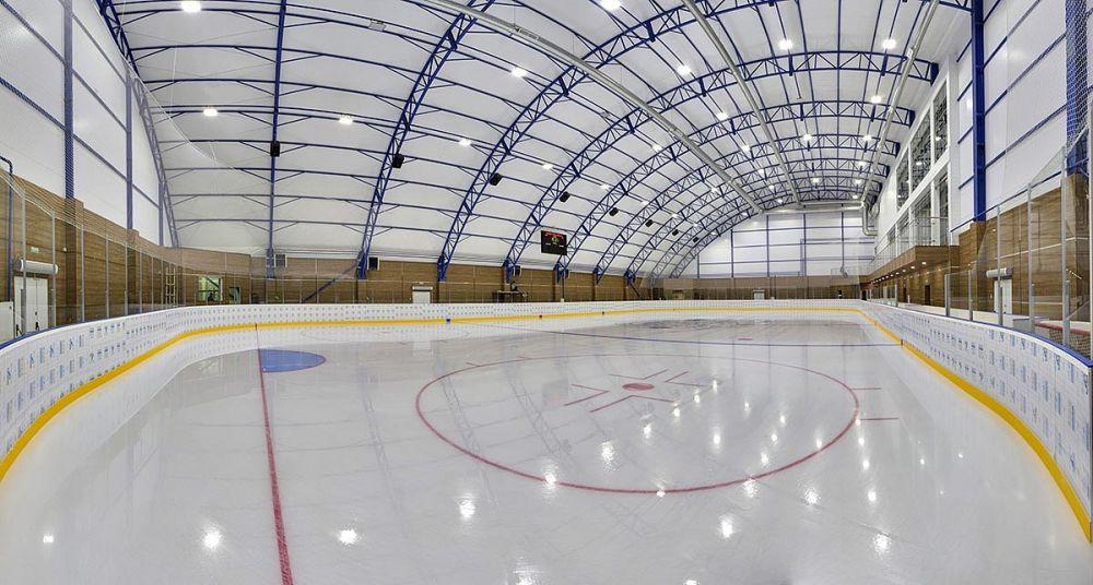 Юные биробиджанские спортсмены в День защиты детей попросили президента помочь со строительством крытого ледового катка