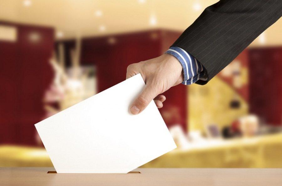 Закон о возврате прямых выборов мэров принят в Приморье