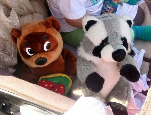 Правительство ЕАО сообщило новые подробности в истории с «кладбищенскими» игрушками в Известковом