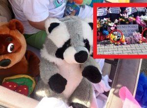 Скандал в Известковом: победившей в параде колясок семье вручили игрушки, возложенные к мемориалу в память о погибших детях в Кемерово