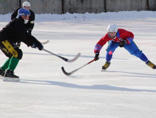 Кубок губернатора ЕАО по хоккею с мячом увезли в Хабаровск