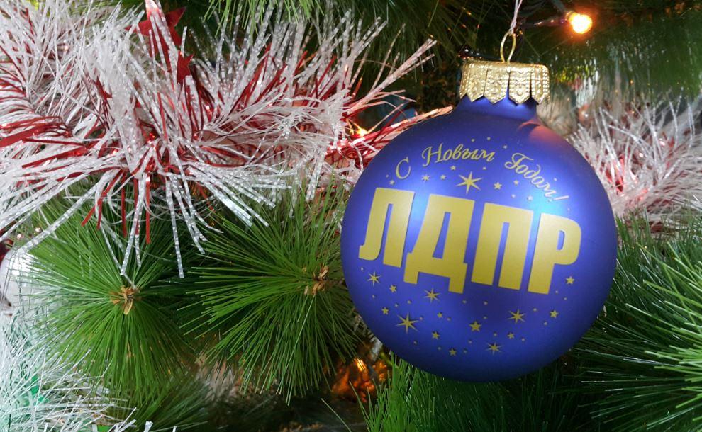 Удачи, здоровья и семейного благополучия желает жителям ЕАО в Новом году лидер фракции ЛДПР в областном парламенте