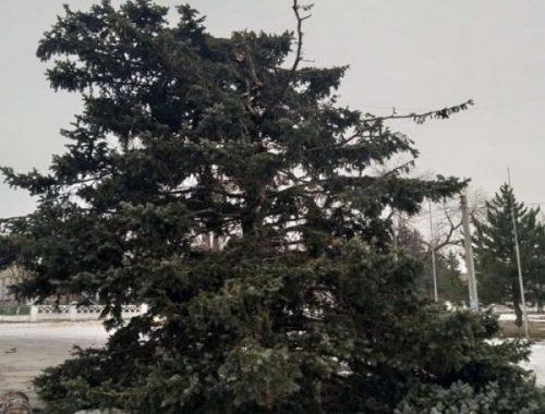 Самые трешовые новогодние ёлки России, на которые страшно смотреть