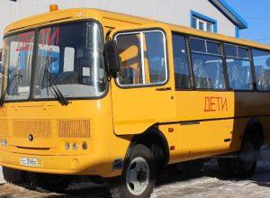 Не прошло и месяца: чиновники возобновили подвоз школьников из села Пронькино в Валдгейм