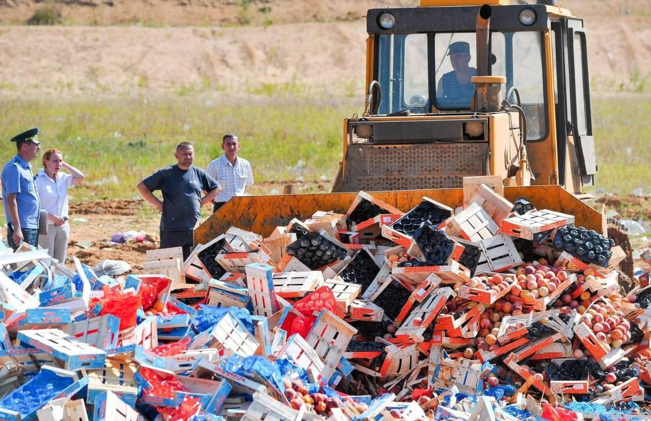 Лучше пустить под нож: президент объяснил уничтожение санкционных продуктов