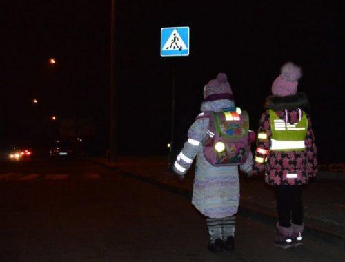 В Биробиджане предложили бесплатно перевозить школьников со светоотражающими аксессуарами