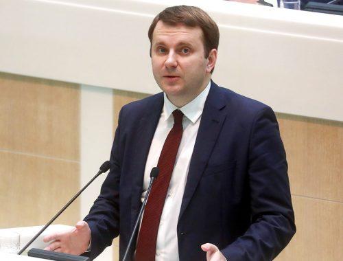 Володин прервал выступление Орешкина в Госдуме