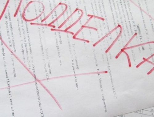 Свыше 300 липовых сертификатов выдал иностранцам образовательный центр в Биробиджане