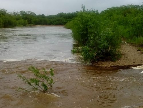 Разлившаяся Бира наступает на окраину Биробиджана