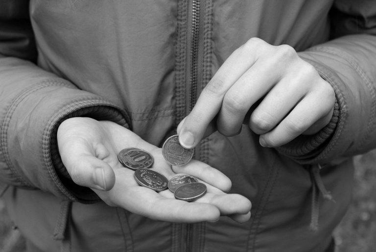 Почти четверть нищих: число жителей ЕАО с доходом ниже прожиточного минимума за 2020 год обнародовал Хабаровскстат