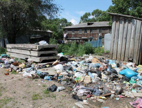 Общественные активисты добиваются регулярной очистки выгребных ям в Биробиджане