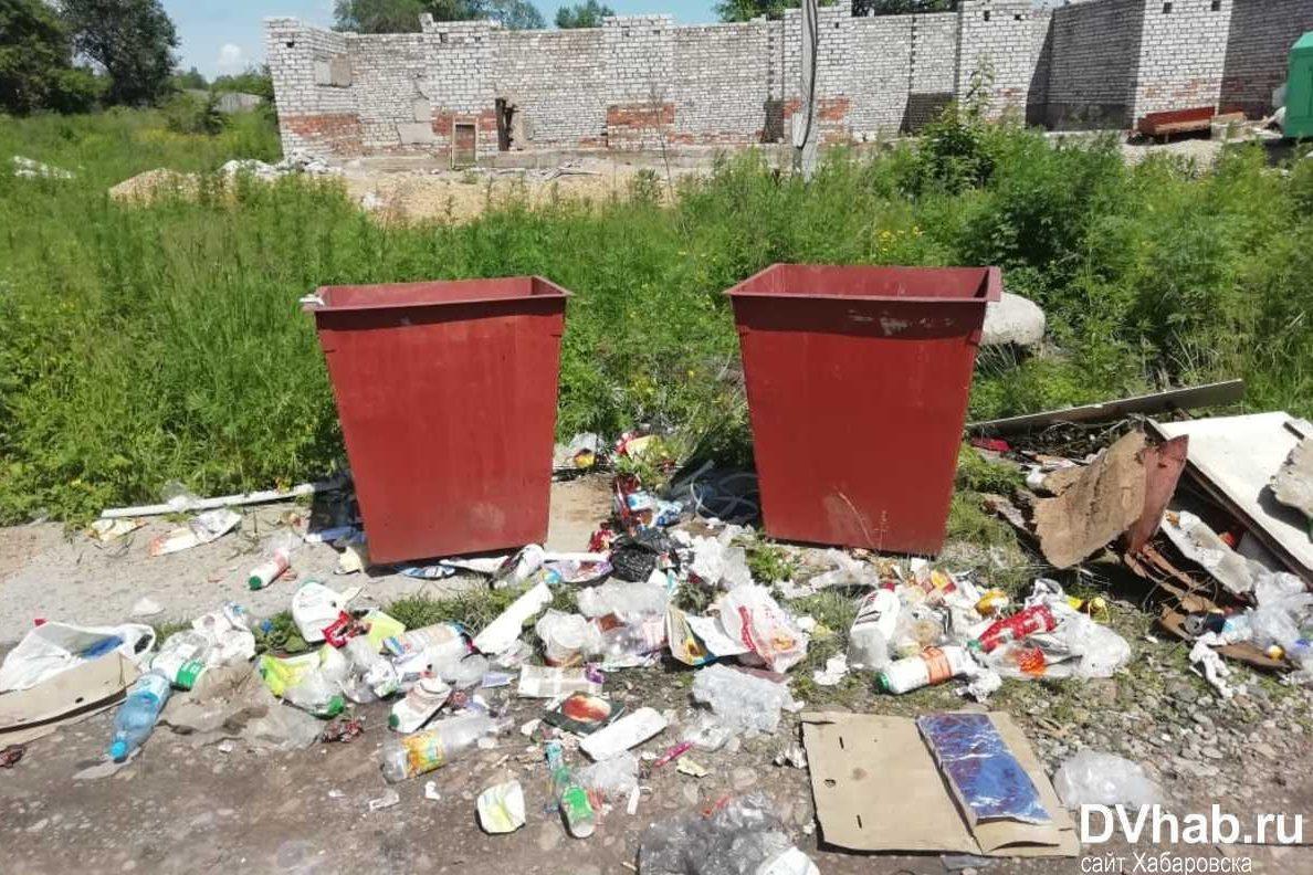 Жители села Птичник стали заложниками мусорной войны