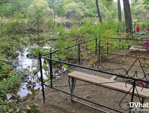 «Гроб на гроб»: варианты захоронения на кладбище в Раздольном предложила глава Птичнинского поселения