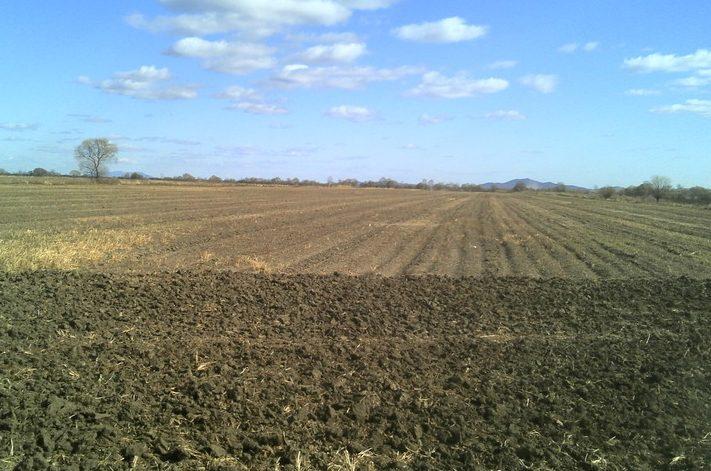 В ЕАО фермеру незаконно отказали в выдаче «дальневосточного гектара»