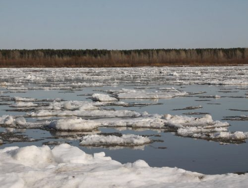 Ледоход начался на реках ЕАО
