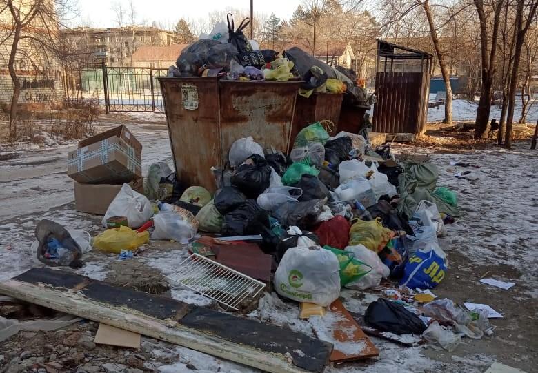 Жители улицы Пионерской в Биробиджане возмущены «мусорным беспределом»