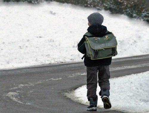 В ЕАО на 4% проиндексировали пособия на содержание опекаемых и приемных детей