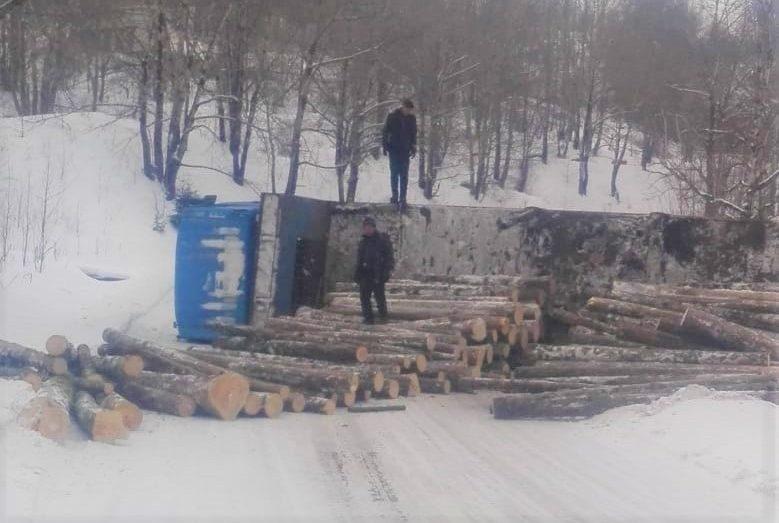 Управление лесами нашло нарушения в деятельности китайских лесорубов в Облученском районе